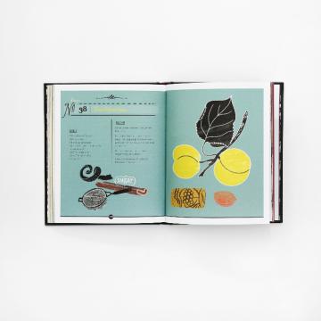 vormgeving, vormgevingsbureau, Studio 100% artdirection, opmaak, boek, drankjes, recepten, uitgeverij snor, boekcover, boekomslag, merk, branding, design, designstudio, merkontwikkeling, likeur en limonade