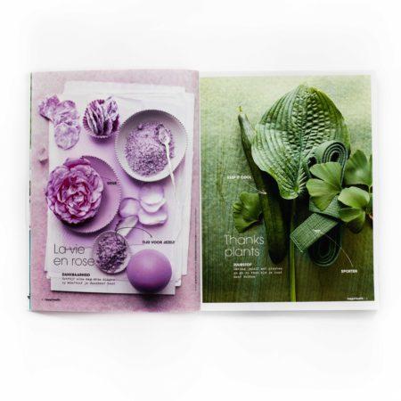 Artdirection, design, happinez magazine, branding, layout design, designstudio, vormgeving, tijdschrift, special, health, merk, merkontwikkeling, vormgevingsbureau, cover, omslag